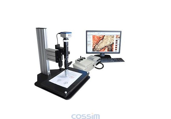 """""""也就是显微镜下细胞和组织的结构"""